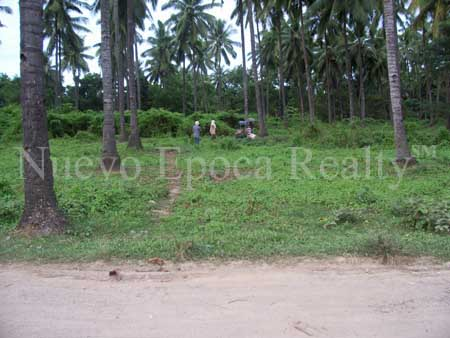 Agricultural Lot or Raw Land