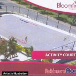Bloomfields Activity Court