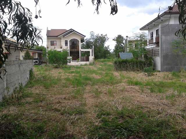 hillsborough pointe lot for sale
