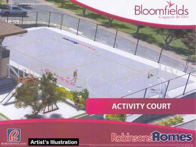 Bloomfields Activity Court